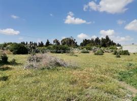 Terrain Skak El  Khedri